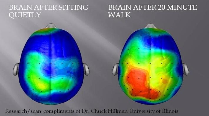 WalkingBrain